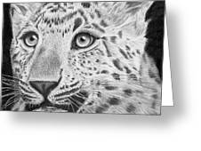 Chinese Panther Greeting Card