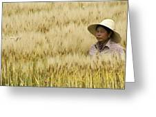 Chinese Rice Farmer Greeting Card