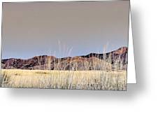 Chiracahuas Panorama Greeting Card