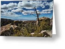 Chiricahua National Monument Greeting Card