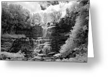 Chittenango Falls 1 Greeting Card