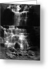 Chittenango Falls Bw Greeting Card