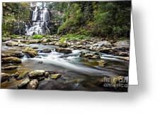 Chittenango Falls  Greeting Card