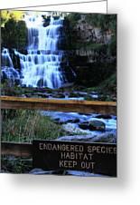 Chittenango Falls State Park Greeting Card