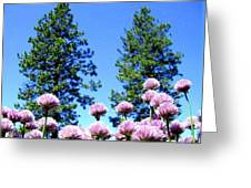 Chives Alive Greeting Card