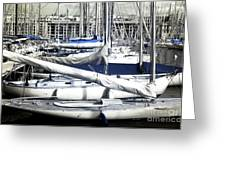 Choices In The Port Greeting Card
