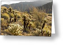 Cholla Cactus And Ocotillo Plants Greeting Card