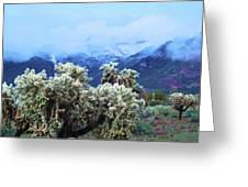 Cholla Cactus And Superstition Mountains Greeting Card