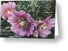 Cholla Flowers Greeting Card