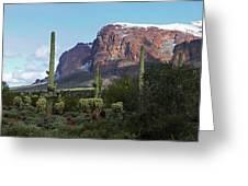 Cholla  Saguaro Superstition Mountain Greeting Card