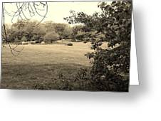 Christ In The Field Sepia Greeting Card