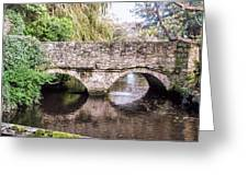 Christchurch - Bridge Over The Millstream Greeting Card