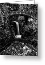 Christine Falls - Mount Rainer National Park - Bw Greeting Card