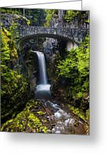 Christine Falls - Mount Rainer National Park Greeting Card