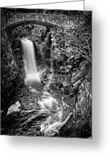 Christine Falls, Mt Rainier National Park Greeting Card
