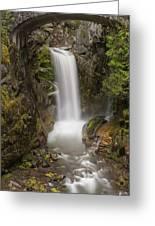 Christine Falls Mt Rainier Washington Greeting Card