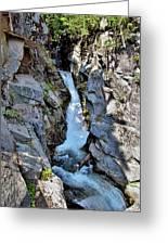 Christine Falls - Upper Part - Mount Rainier National Park 3 Greeting Card
