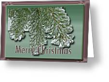 Christmas Arborvitae In Ice Greeting Card