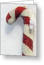 Christmas Candy Cane On Real Snow Greeting Card