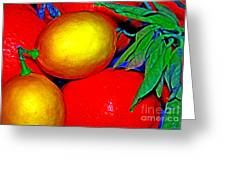 Christmas Fruit Greeting Card