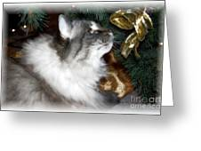 Christmas Kitty Greeting Card