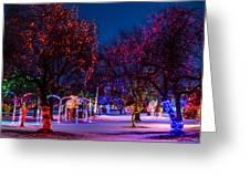Christmas Lights At Locomotive Park Greeting Card