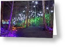 Christmas Lights Decoration Along Lafarge Lake Path Greeting Card