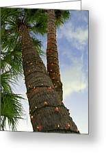 Christmas Lights On Palm Trees Greeting Card