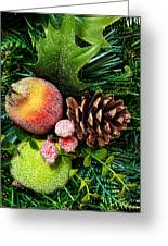 Christmas Ornaments II Greeting Card