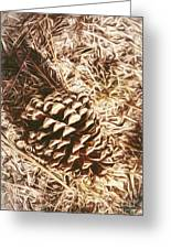 Christmas Pinecone On Barn Floor Greeting Card