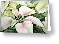 Christmas Poinsettias Greeting Card by Bobbi Price