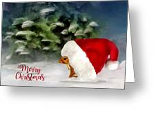 Christmas Squirrel  Greeting Card Greeting Card