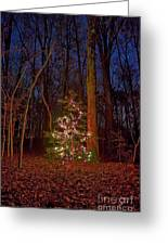 Christmas Tree In Forest Greeting Card