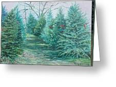 Christmas Tree Lot Greeting Card