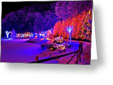 Christmas Trees Row And Frozen Lake View Greeting Card