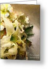 Christmas White Flowers Greeting Card