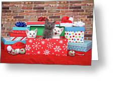 Christmas With Kittens Greeting Card