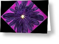 Chrysanthemum 2 Greeting Card
