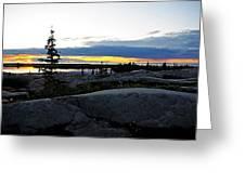 Churchill Tundra No. 1 Summer Greeting Card
