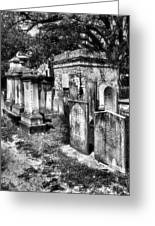 Churchyard Of Old Charleston Greeting Card