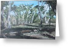 Cimmeron Grasslands Greeting Card