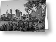 Cincinnati Skyline Through Trees Greeting Card