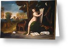 Circe And Her Lovers In A Landscape 1516 Greeting Card