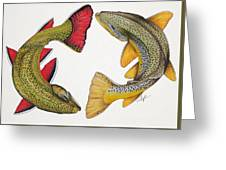 Circling Brook And Brown Trout Greeting Card
