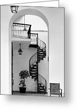 Circular Staircase In Black And White Greeting Card
