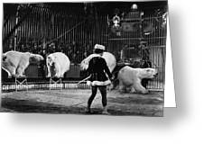 Circus: Polar Bears Greeting Card
