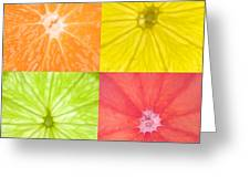 Citrus Fruits Greeting Card