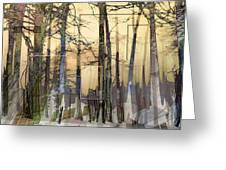 City In Trees Greeting Card