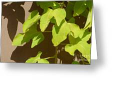 City Leaves Greeting Card