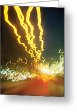 City Lights Wild Greeting Card